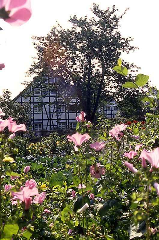 Oestrich Fachwerkhaus im Bauerngarten
