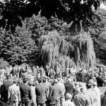 Volksgarten Frühkonzert im August (ca. 1965)
