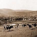 Volksgarten nach Südwesten (1937)