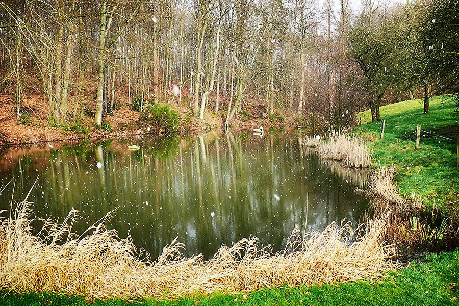 Teich nahe der Quelle des Flehmebachs im Schneetreiben